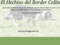 El Hechizo del Border Collie