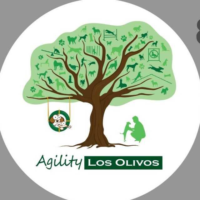 Agility Los Olivos